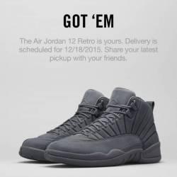 Nike air jordan retro 12 psny