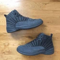 Nike air jordan 12 retro psny ...