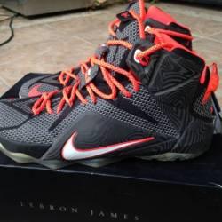 Nike lebron 12 - court vision