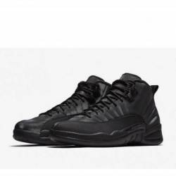 Air jordan 12 retro winterized...